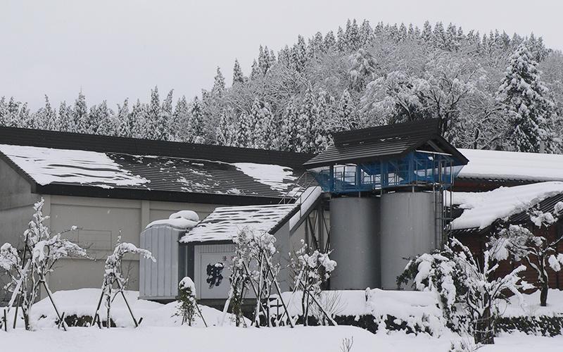 根知男山 渡辺酒造店